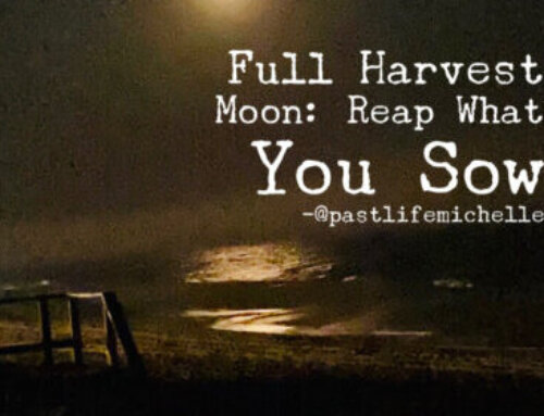 Full Harvest Moon: Reap What You Sow